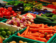 VEGETABLES – YOUR HEALTH BUILDERS