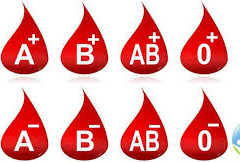 CHANCHA KIDS!- DO YOU KNOW?   DO ANIMALS HAVE BLOOD GROUP LIKE HUMAN BEINGS?