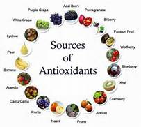 OXIDANTS IN THE BODY