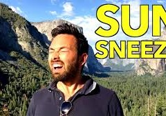 DOES SNEEZING COME, ON SEEING THE SUN?