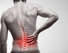 REASONS FOR THE LOWER BACK PAIN